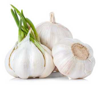 How to get rid of dandruff with garlic