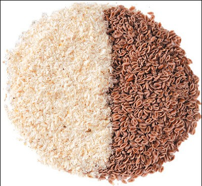 benefits-of-psyllium