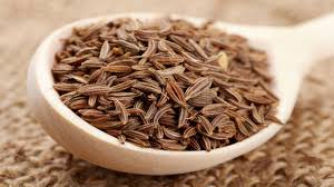 cumin-prevents-cancer