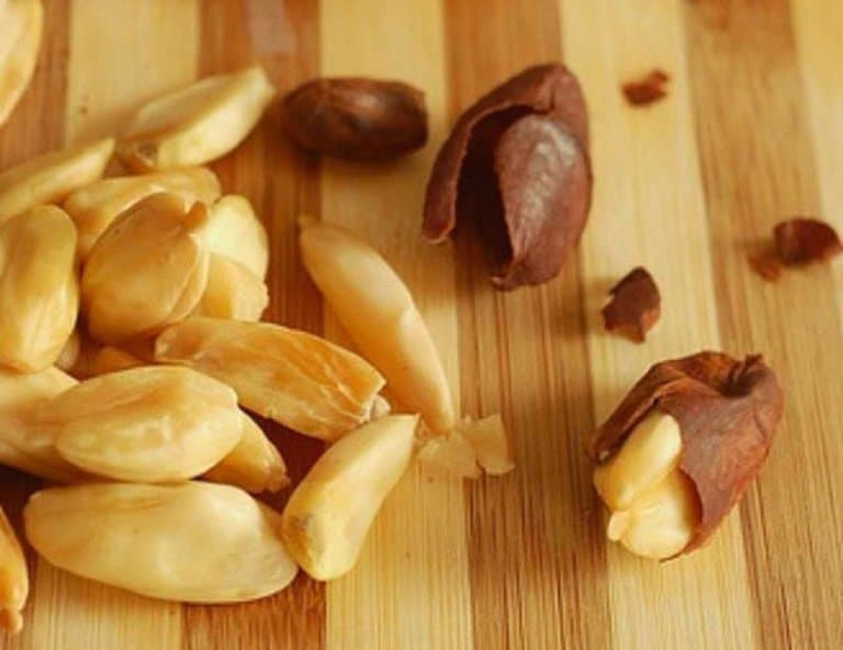 Pili nuts: Health benefits and nutritional value