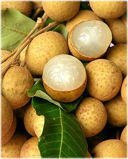 benefits-of-longan