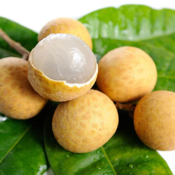 health benefits of longan