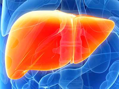 low liver enzymes