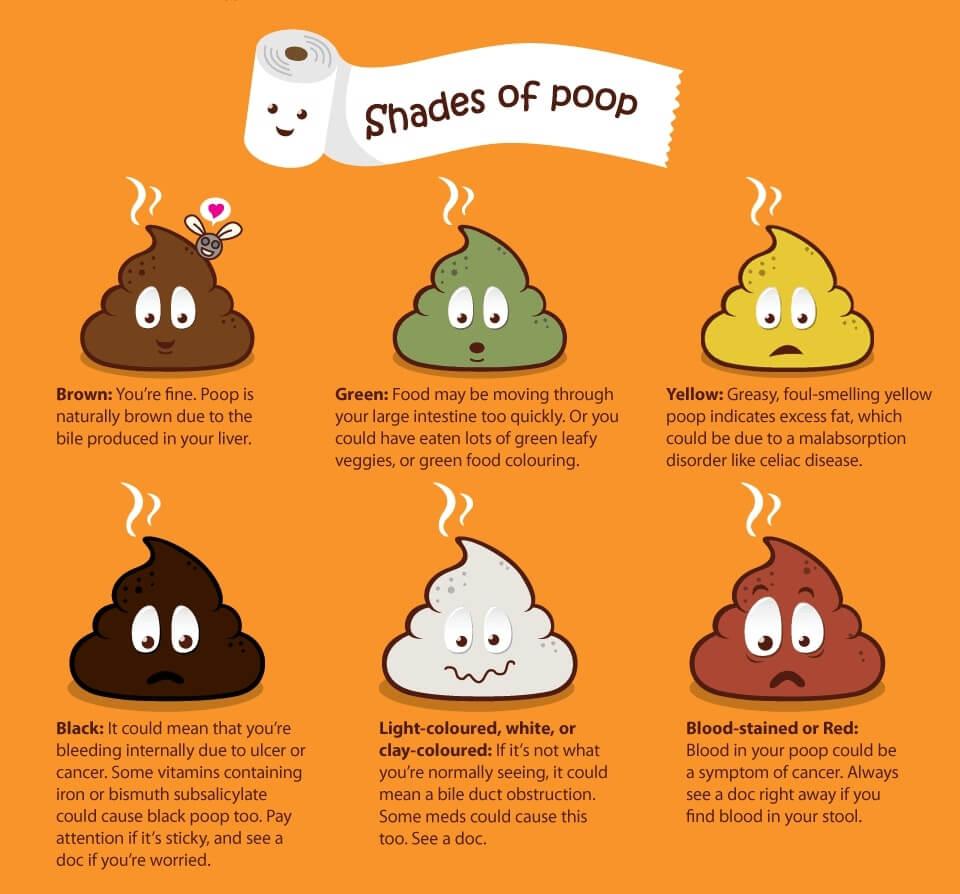 shades of poop
